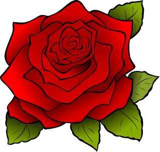 rosa haut nach wunde